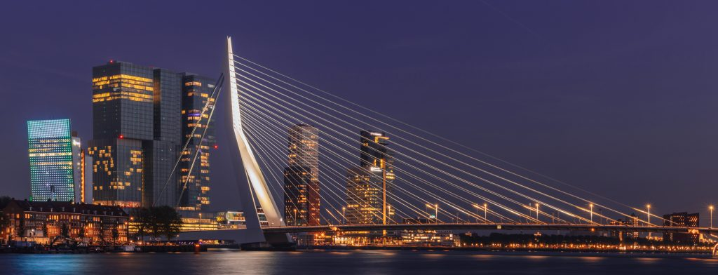 SEO consultant en bedrijf Rotterdam