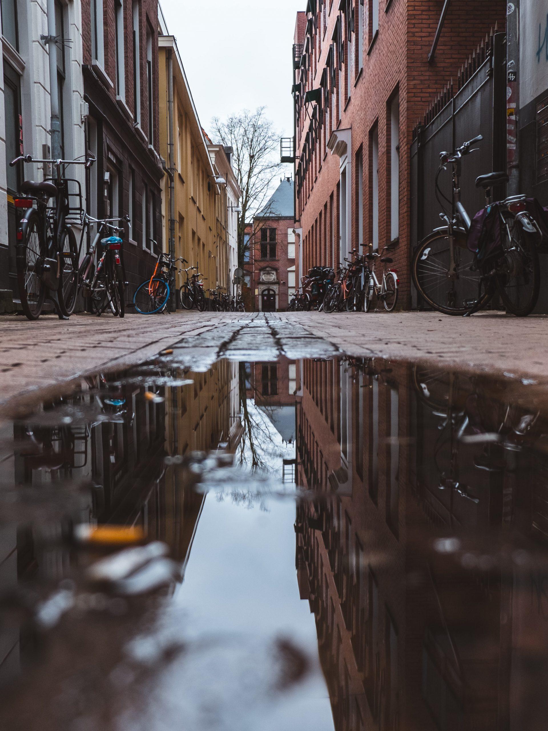SEO bureau Groningen